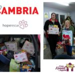 Cambria supports Hope Rescues Cosy Kennels Shoebox Appeal